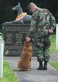 US Navy 061027-N-9662L-048 Petty Officer 2nd Class Blake Soller, a Military Working Dog (MWD) handler pets the head of his MWD Rico, at the War Dog Cemetery located on Naval Base Guam.jpg