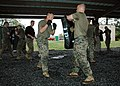 US Navy 070315-N-7427G-001 Sgt. Maj. Wayne Rumore prepares to strike a punching bag held by Lt. Col. David Bellon as part of green belt martial arts class hosted by the 3rd Marine Expeditionary Unit, 23rd Battalion.jpg