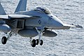 US Navy 090217-N-3610L-243 An EA-18G Growler assigned to the.jpg