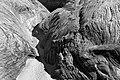 UTAH - Upper Harris Wash (3) (11118035573).jpg
