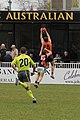 UWS Giants vs. Eastlake NEAFL round 17, 2015 128.jpg