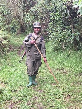 Park ranger - Park ranger in Uganda