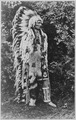 Umapine (Wakonkonwelasonmi), a Cayuse chief, full-length, standing, wearing a feathered head-dress, 09-1909 - NARA - 531112.tif