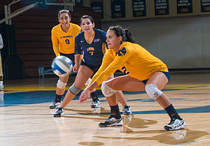 Texas A&M–Commerce Lions women's volleyball - The 2013 team in action against the Texas A&M–Kingsville Javelinas