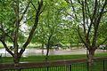VIEW , ®'s - DigiGraf - Ð - ┼ , GREAT LONDON ASHBURTON VISTAS - panoramio (8).jpg