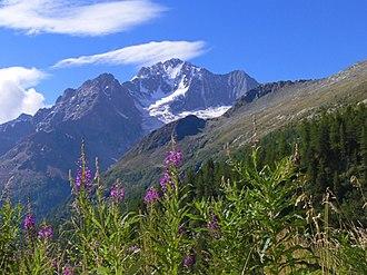 Monte Disgrazia - Image: Val sissone monte disgrazia
