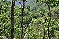 Valle del Jerte 07.jpg