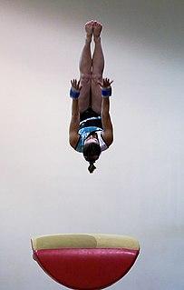 Vault (gymnastics) gymnastics apparatus; skill