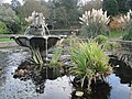 Ventnor Botanic Garden in November 2011 4.JPG