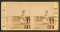 Venus rising from the sea and Washington statue, Pub. Gard., Boston, by Chase, W. M. (William M.), 1818 - 9-1905.png