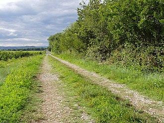 Via Agrippa - A section of Via Agrippa near Beaumont-Monteux (Drôme)