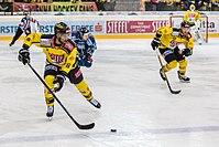 Vienna Capitals vs Fehervar AV19 -118.jpg