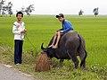 Vietnam & Cambodia (3337605014).jpg