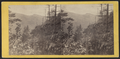 View from Sunset Rock, near the Laurel House, looking towards the Peak, by E. & H.T. Anthony (Firm).png