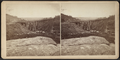 View looking south-east on the Trestle Bridge, at East Tarry Town, N.Y. on the New York, Boston & Montreal Railway, from Robert N. Dennis collection of stereoscopic views 2.png