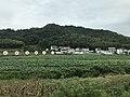 View near Donghekou, Jin'an, Luan 9.jpg