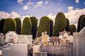 View of Cemetery of Punta Arenas.jpg