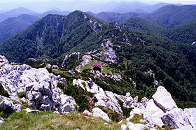 View to the Schlosser lodge from the Veliki Risnjak.jpg