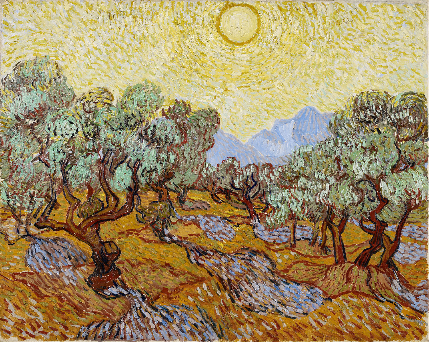 vincent van goghs the olive trees