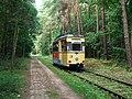 WS Waldstrecke Tw 28 2012-08-09 CLP 02.jpg