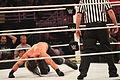 WWE Raw IMG 8007 (15168852897).jpg