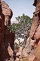 Wadi Rum - Jordanie 07-2012 (7631249516).jpg