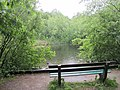 Wandelpark Oosterbos (31395688406).jpg