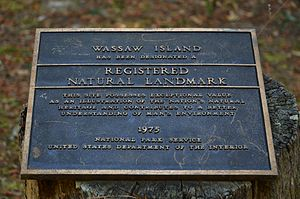 Wassaw Island - Designated a Natural Landmark in 1975