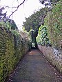 Wellswood Path - geograph.org.uk - 1773264.jpg