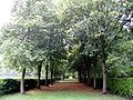 Whipsnade Tree Cathedral, Nave.jpg