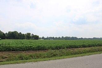 Whiteford Township, Michigan - Image: Whiteford township farmland