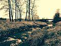 Widawka - panoramio (20).jpg