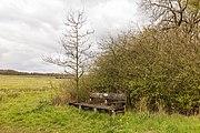 Wijnjeterper Schar, Natura 2000-gebied provincie Friesland 011.jpg