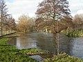 Wimborne, River Allen - geograph.org.uk - 1617603.jpg