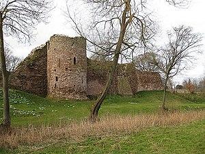 Wilton Castle -  Wilton Castle.