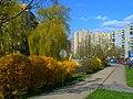 Wiosna w Bielsku-Białej. - panoramio (7).jpg