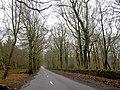 Woodhead Road - geograph.org.uk - 665656.jpg