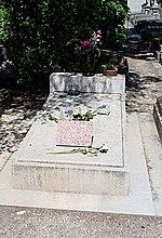 Simone Signoret — Wi...