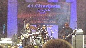 Sead Lipovača - Lipovača (left) performing with Divlje Jagode at Gitarijada festival in 2007