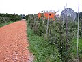 Zicht op gereconstrueerde Romeinse weg nabij het bezoekerscentrum--Archeoregio 13 - De Meern - 20427053 - RCE.jpg