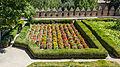 Zinnia elegans plantation Alhambra gardens 2014-08-06.jpg