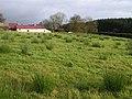 """""""The Barn Field"""", Errigle - geograph.org.uk - 1046788.jpg"""