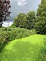 'The Butts' medieval defensive ditch at Sandwich, Kent England 05.jpg