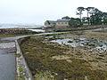 Île de Berder-Gois-Marée basse (1).jpg