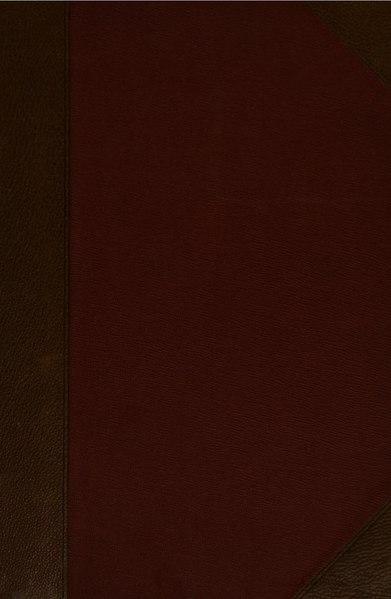 File:Блаженный Феодорит, епископ Киррский. Его жизнь и литературная деятельность. Глубоковский Н. Том 2 (1890).pdf