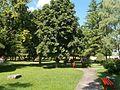Болнички парк, Рогатица 11.jpg