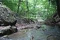 В лесу выше водопада - panoramio.jpg
