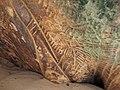 Кам'яна́ Моги́ла,фото 5, в одному з гротів.JPG