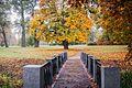 Олександрія, осінь, місток.jpg