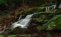 По пътят за Чипровски водопад.jpg